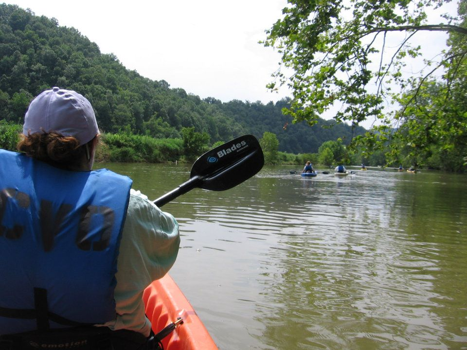 Kayaking the clinch myswvatoday for Clinch river fishing
